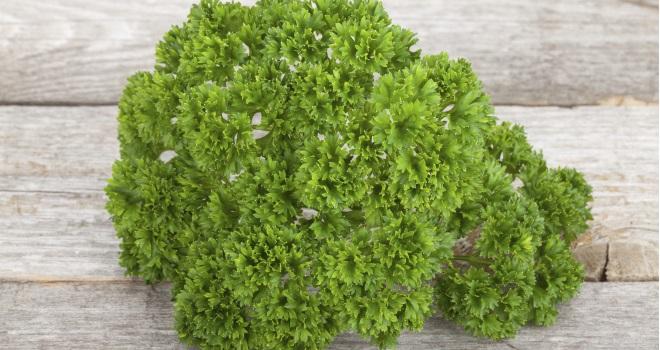 petersilie mit hohem vitamin c gehalt food fit gesund schoen. Black Bedroom Furniture Sets. Home Design Ideas